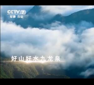 CCTV广告